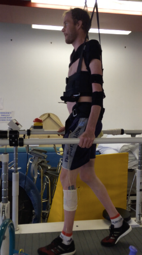 LEARNING TO WALK AGAIN FOR THE FOURTH TIME, 2016