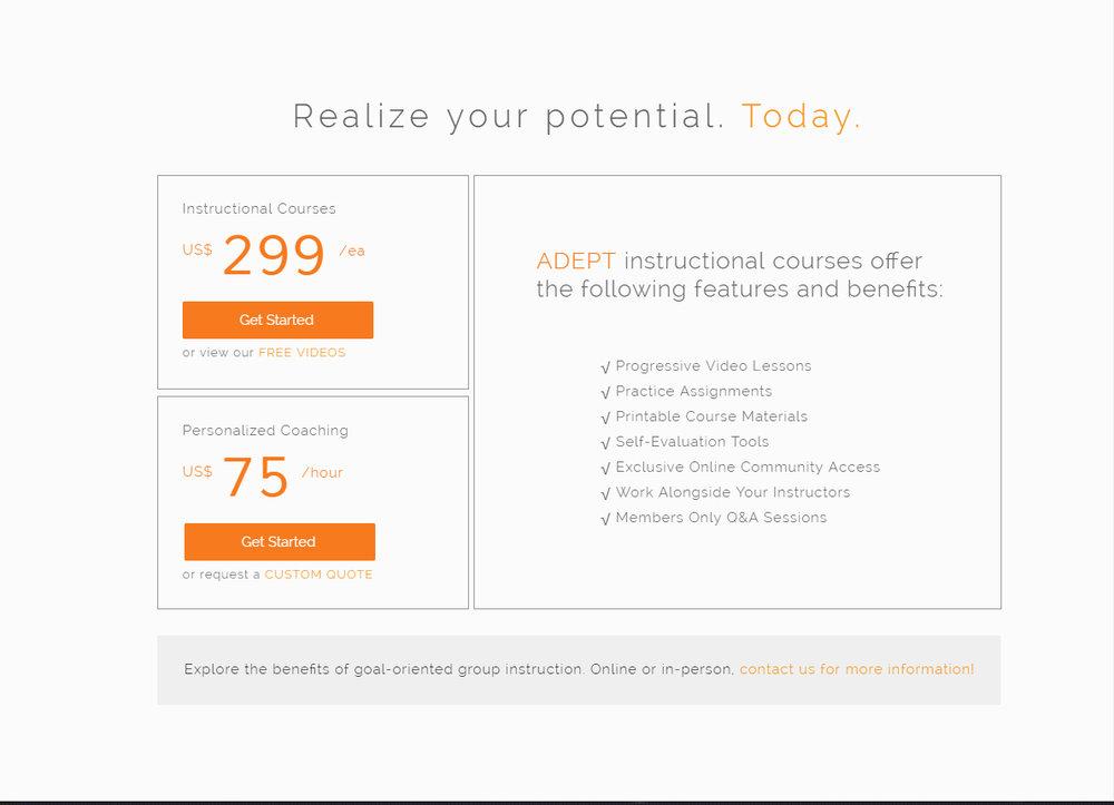 adept-website3.jpg