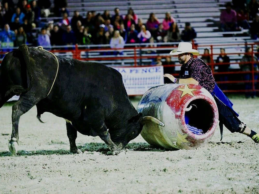zach%2Barthur%2Bbullfighter%2B2.jpg