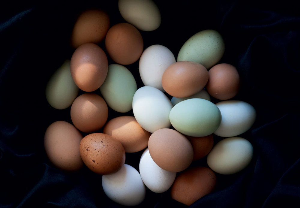 There are some exciting up and coming alternatives to the resource-intensive chicken egg. Photo: modernfarmer.com