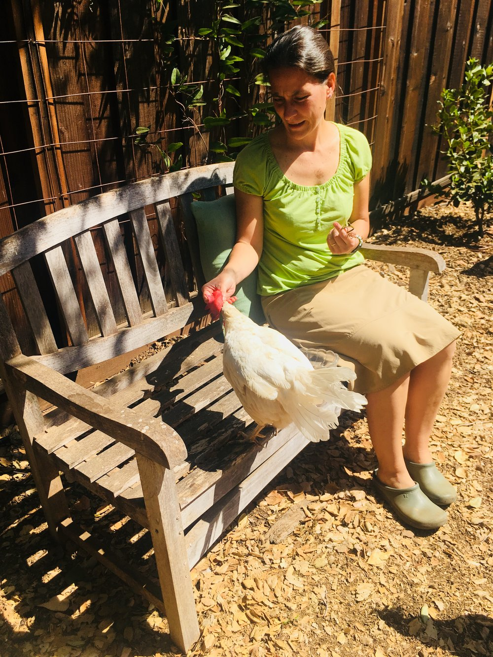 Luna is one of the friendliest chickens living at Isabelle Cnudde's miscrosanctuary.