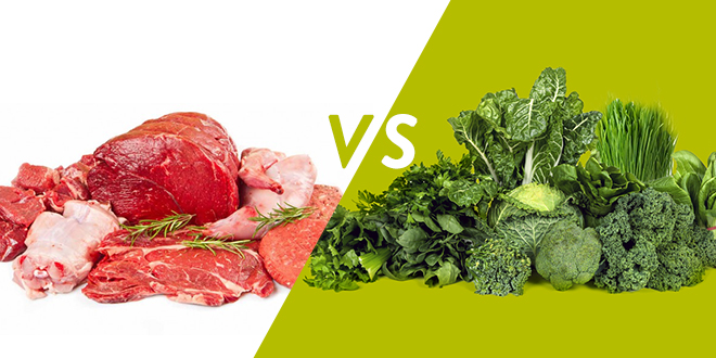 Contrary to popular belief, meat isn't the best source of protein and we don't need nearly the amount we think. We can easily get all the protein we need on a plant-based diet.
