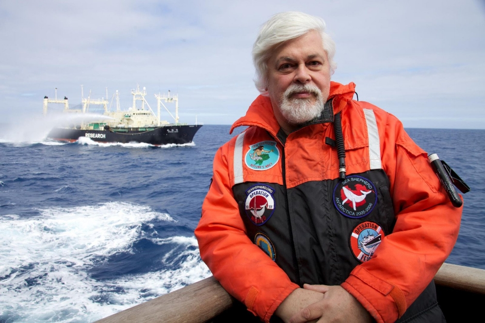 Captain Paul Watson founded Sea Shepherd Conservation Society, an international nonprofit with the aim of ending the destruction of marine habitats and the slaughter of wildlife.  Photo source