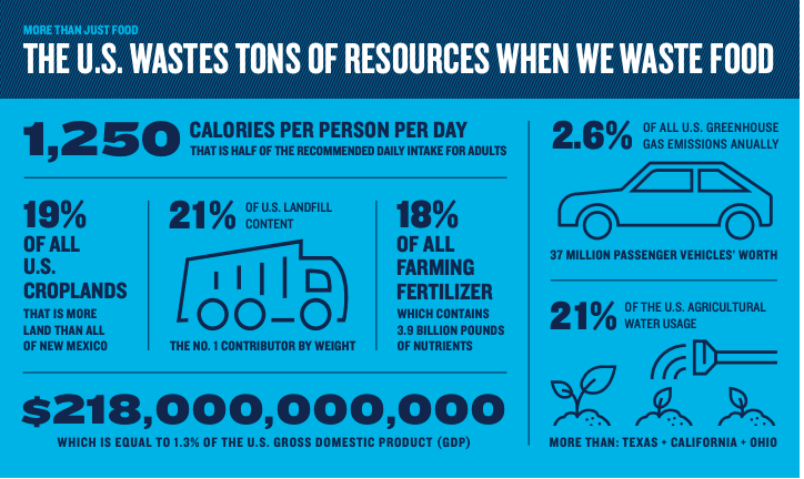 About 40 percent of the food we grow is never eaten. That means the resources that go into producing all that food is wasted, too. Infographic source: NRDC