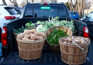 Volunteer gleaners tend to get produce to its destination while it's still fresh.