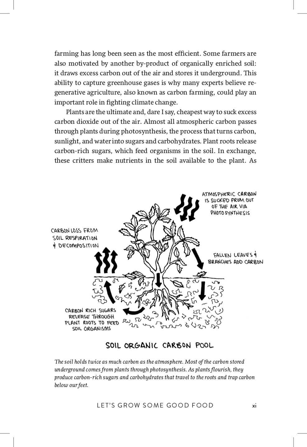 Growing Perennial Foods Preview 8.jpg