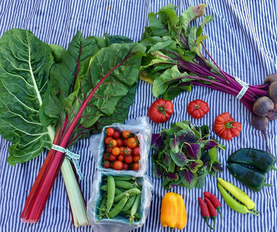 A sample CSA share from The Veg Yard, an urban farm network located in Denver, CO.  Photo source