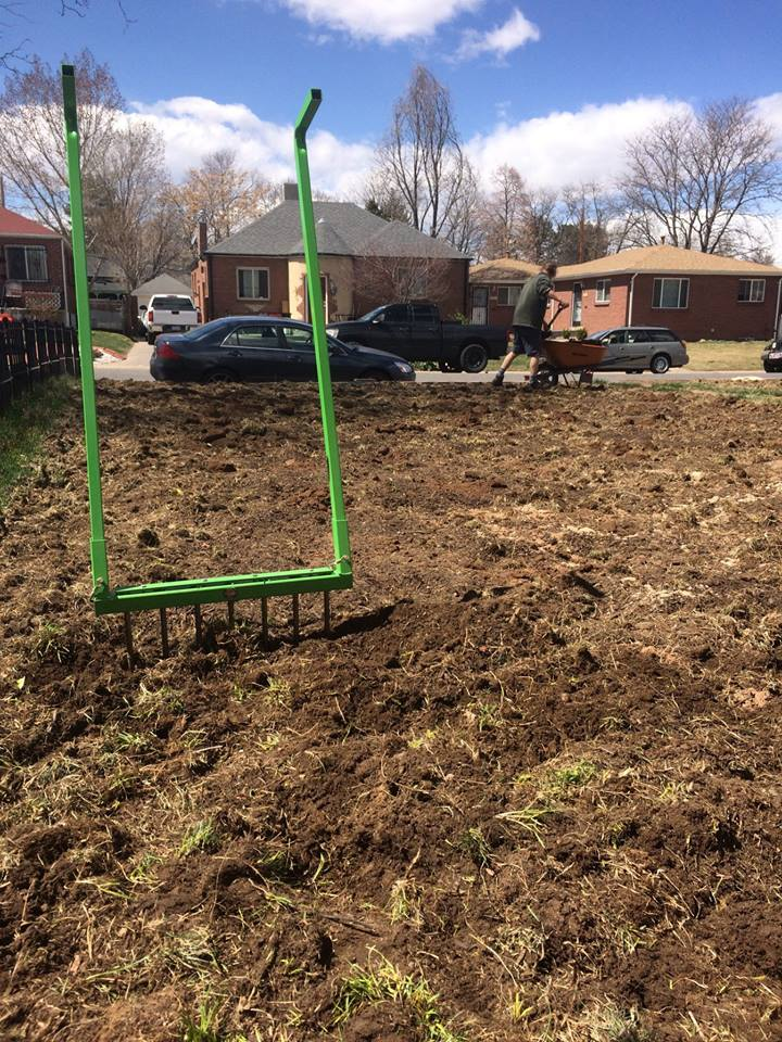 The barely there beginnings of The Veg Yard, Spring 2018.  Photo source