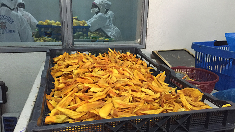Drying mango facility