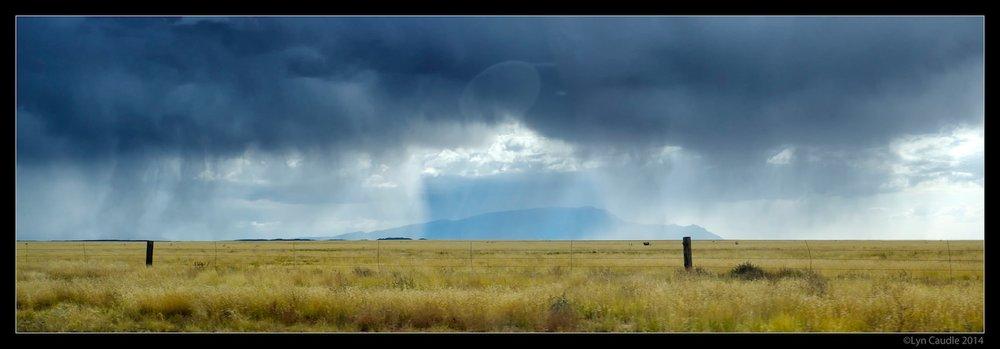 Desert Rain.jpg