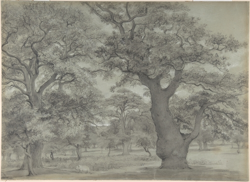 """Oak Forest with a Pig,"" attributed to John Baptist Malchair, (1731-1812), Metropolitan Museum of Art"