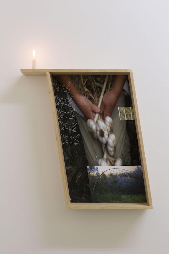 Ode at Ankles  6/7 - 3/8/18  Documentation by Jessica Maurer