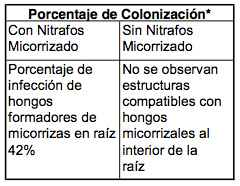Porcentaje de colonización.png