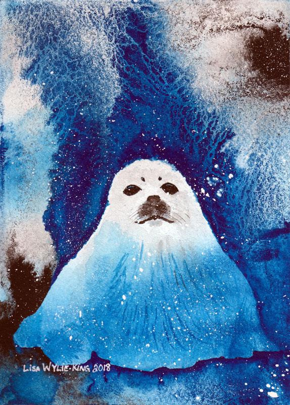 Harp Seal Cub