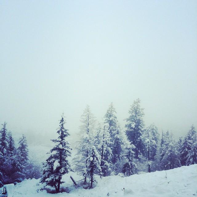 wintersnow2014.jpg