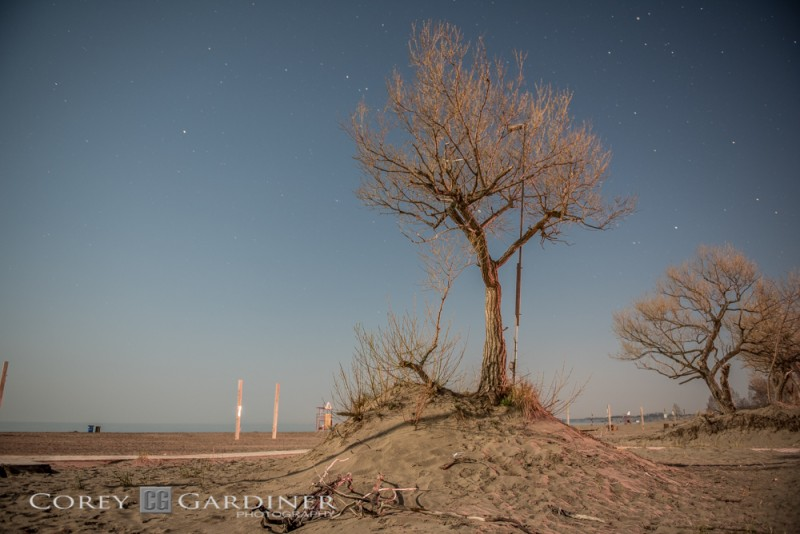 Night Photos at Port Stanley by CG Photography