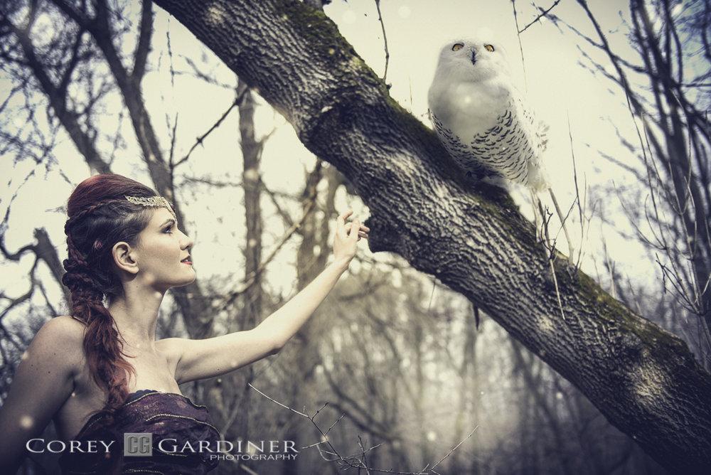 Ines-Taming-Owl-Web-Use1-20.jpg