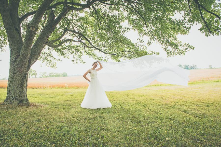 Nicole and Ian Wedding 519.jpg