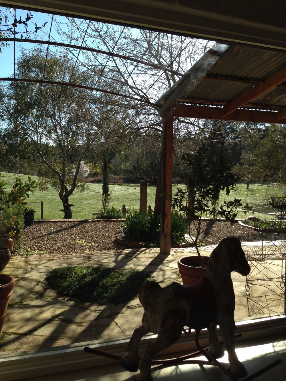 This is the view from the living room complete with antique rocking horse. I love sitting on the sofa with a cup of coffee staring out at the little garden and the paddock beyond where two resident donkeys live.