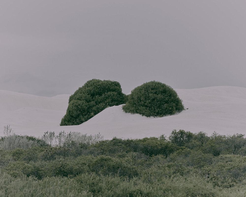 Patrick_Schuttler_Landscape_029.jpg