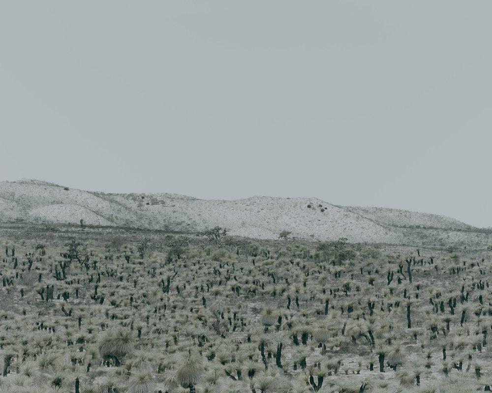 Patrick_Schuttler_Landscape_031.jpg