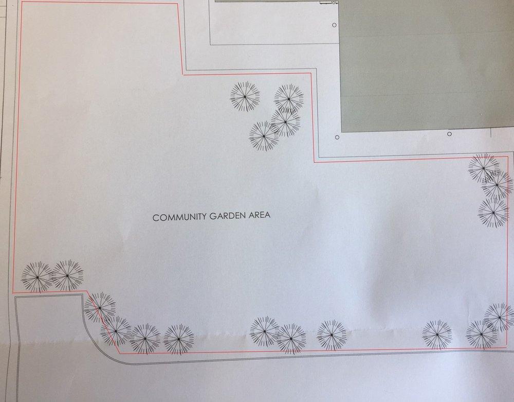 Friock-Hub-Community-Garden-Outline.jpg