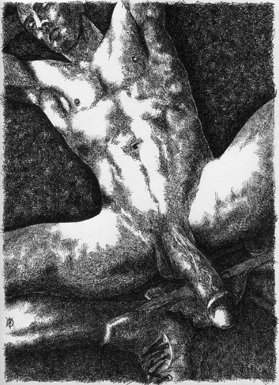 shameless (2014) - Pen-and-ink on paper. Original available. To inquire, write to finncock@finncock.com or to buy a print, check out the FAA print store via button on the page.
