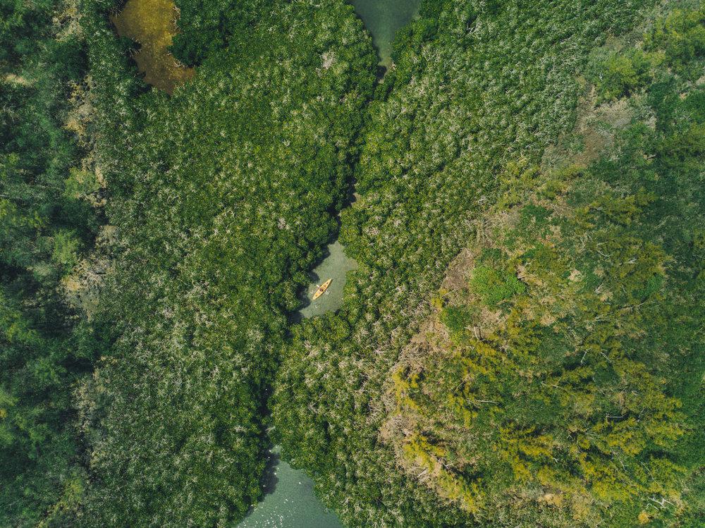 drone-fotografie-drone-piloot-roc-light-certificaat-professioneel-2.jpg