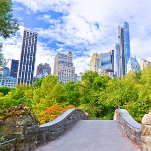 new-york-park-300x300.jpg