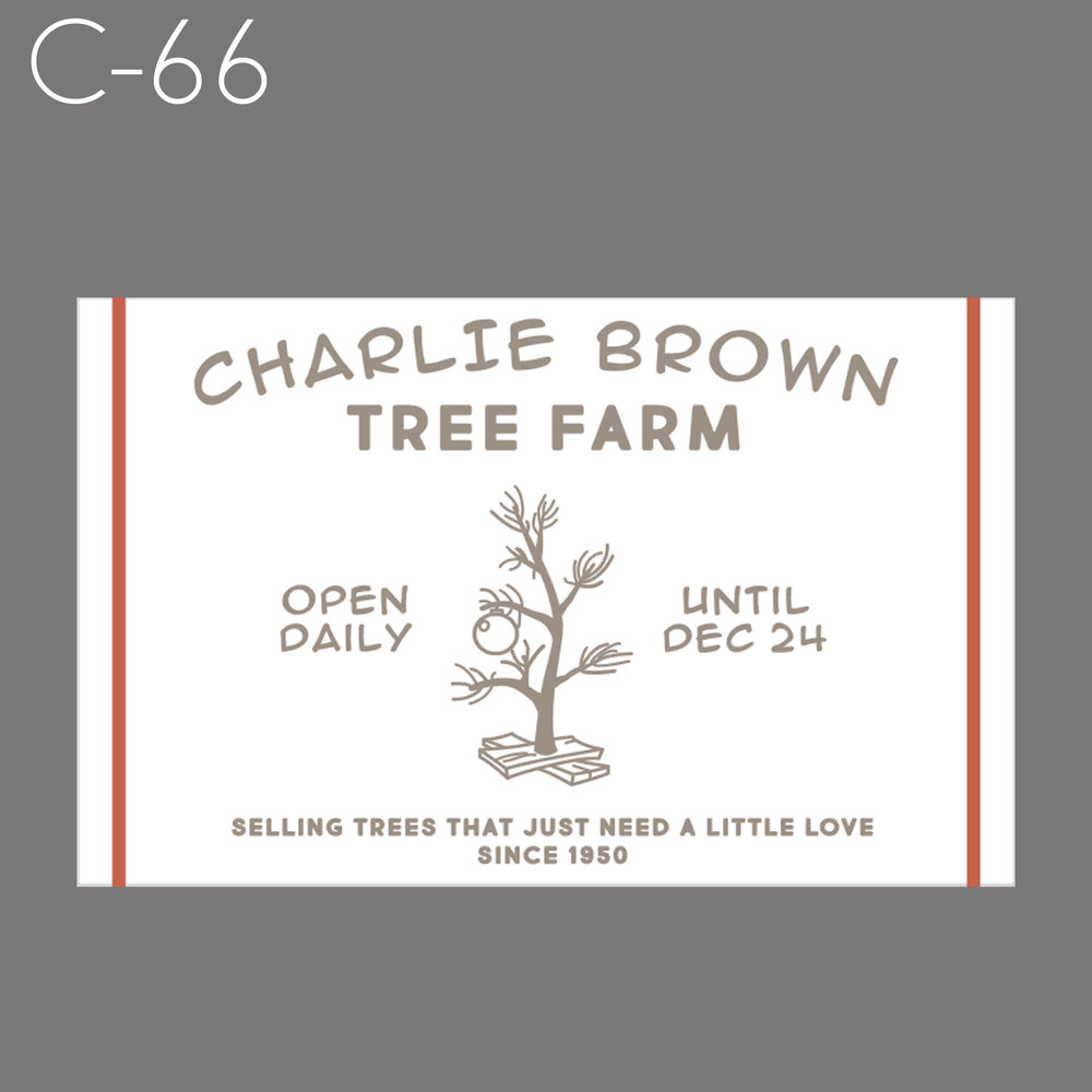 C66 - Charlie Brown.jpg