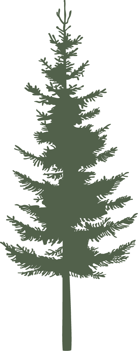 Single Pine - Green.png