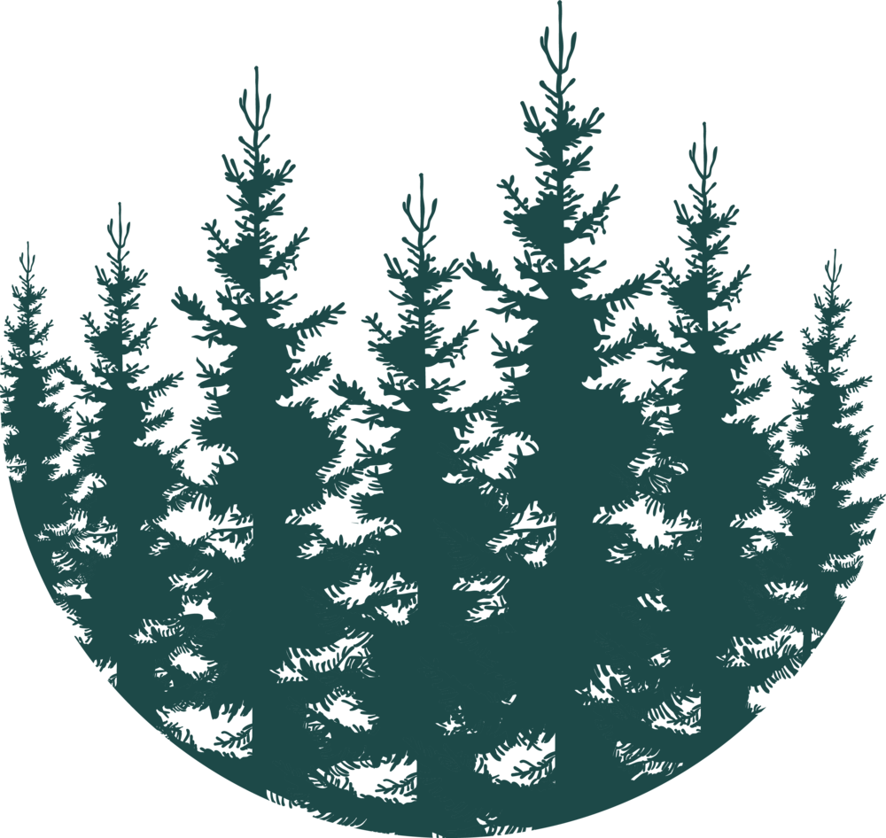 Forest - Teal.png