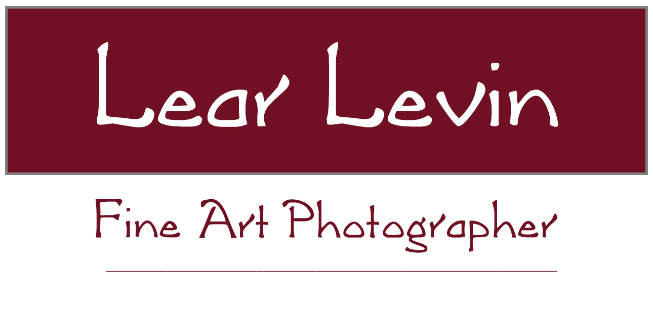 Lear Levin