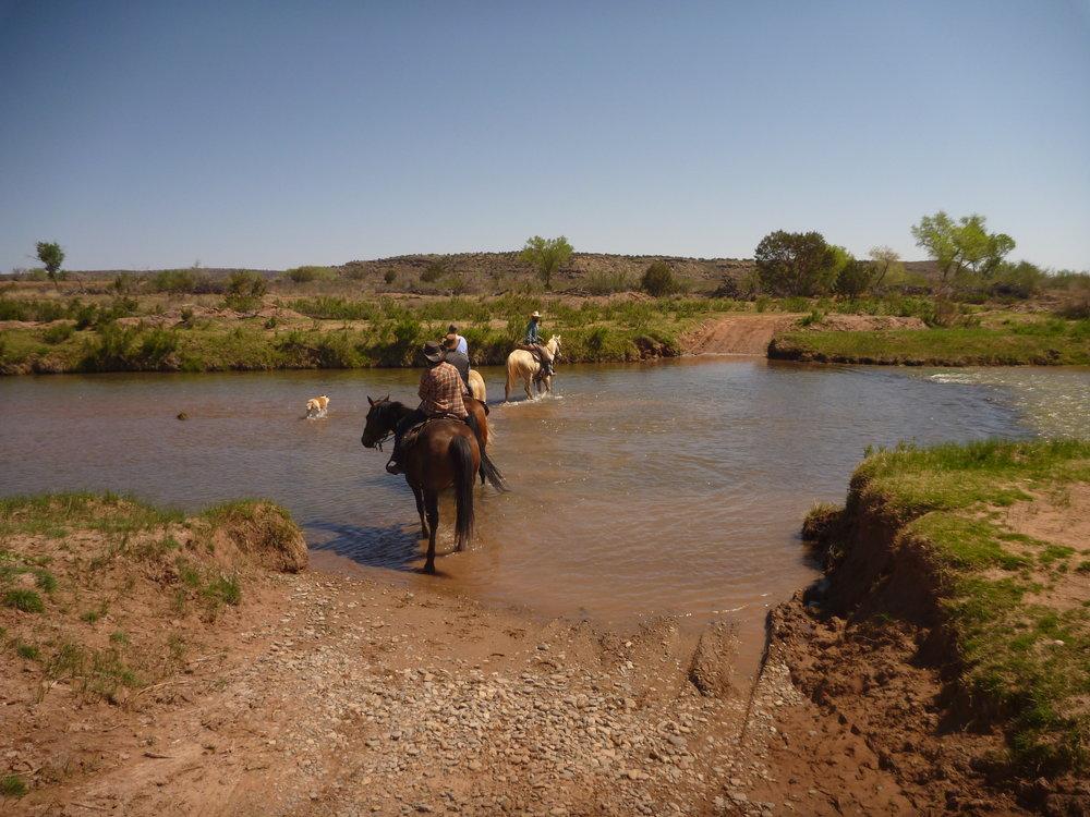 On a trail ride through the Pecos River.  Auf einem Trailritt durch den Pecos River.