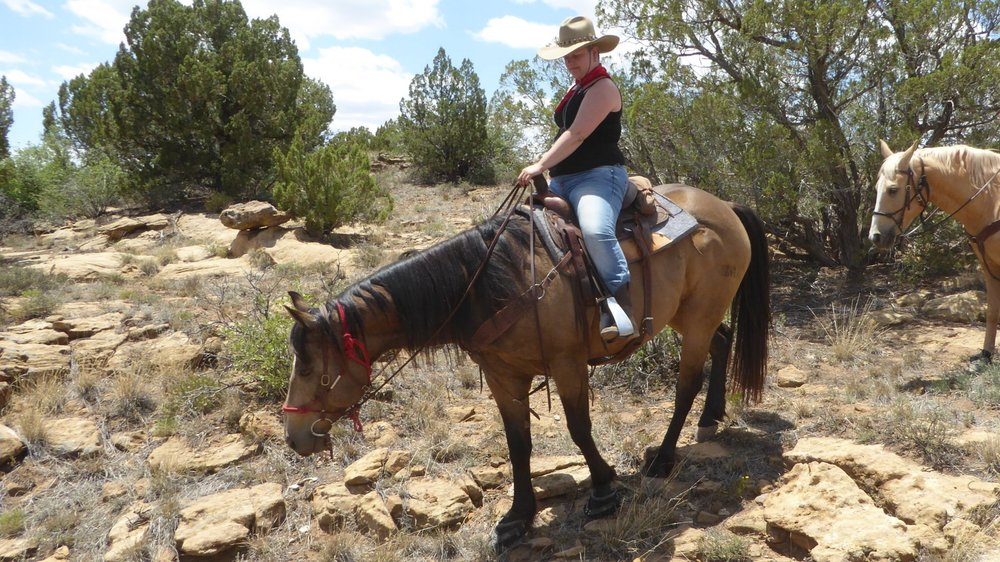 Christina (on KIng) persuaded her parents to spend a few days at our ranch. She wanted to go horseback riding, they wanted to do sightseeing...  Christina (auf King) überredete ihre Eltern ein paar Tage auf unserer Ranch zu verbringen. Sie wollte reiten, sie wollten Sightseeing machen...