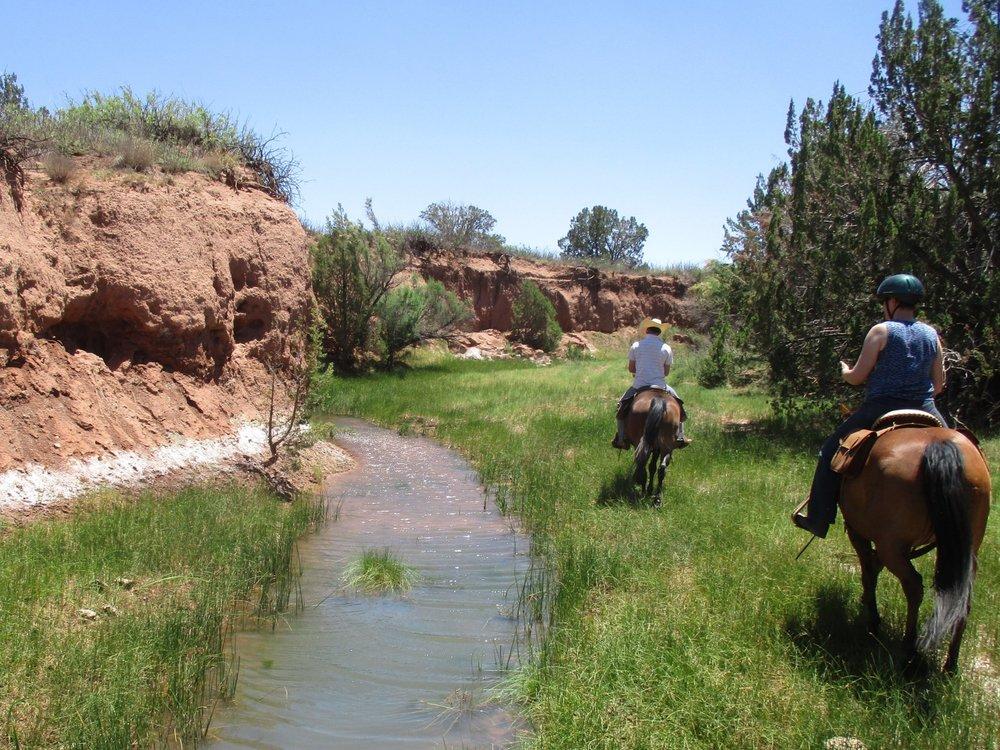 And here some random pictures of June, like trail rides in the Carizzo Creek...  Und hier noch ein paar zufällige Bilder aus Juni, wie Ausritte im Carizzo Creek...