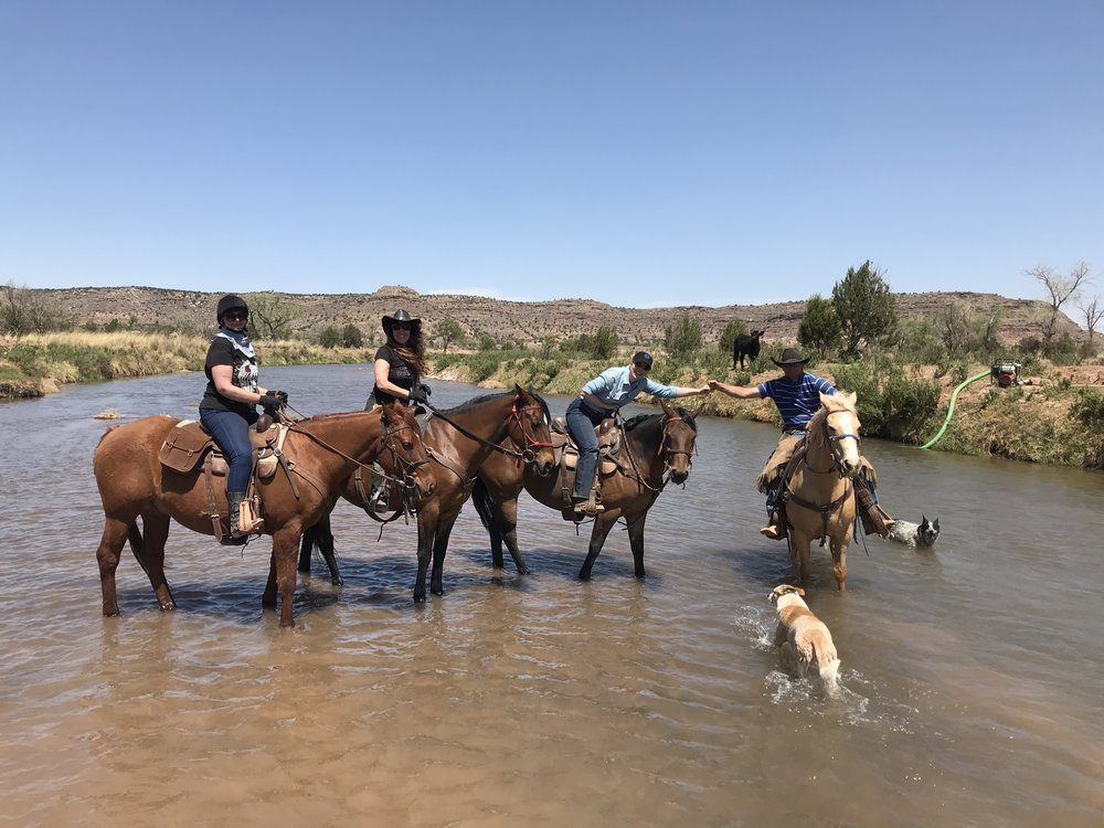 Crossing the Pecos River (from left to right): Susan on Butch, Marilyn on Hank, Katrin on Robin, Rob on Winit, Shelby and Luna.  Den Pecos River durchqueren (von links nach rechts): Susan auf Butch, Marilyn auf Hank, Katrin auf Robin, Rob auf Winit, Shelby und Luna