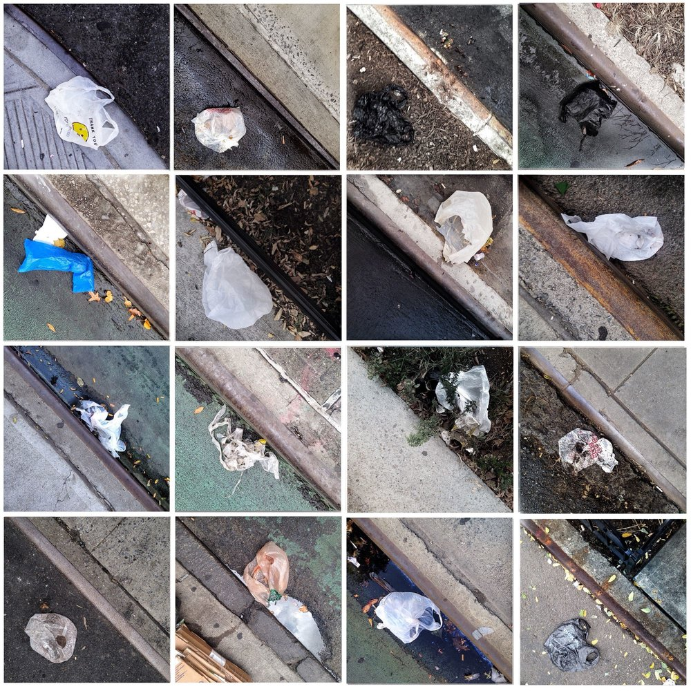 DOROTHEE PIERRARD Photographs of plastic carryout bags littering curbsides in Harlem (part 6).