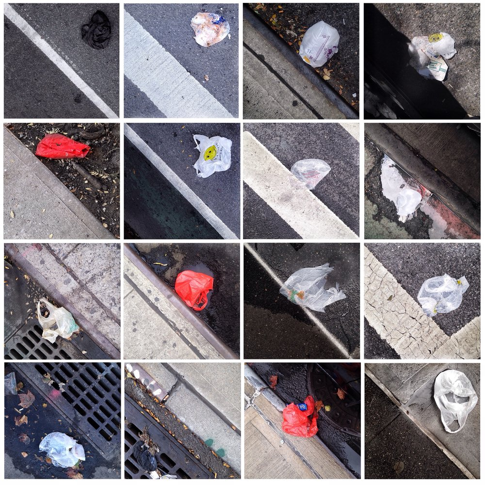 DOROTHEE PIERRARD Photographs of plastic carryout bags littering curbsides in Harlem (part 7).