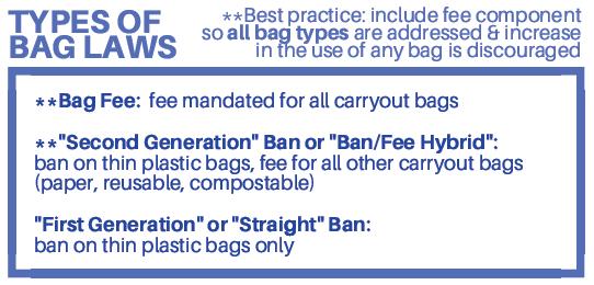 Cuomo Bag Ban image.png