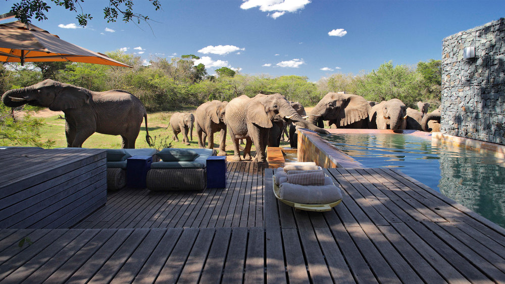 Bathing at one with nature at AndBeyond Phinda Homestead