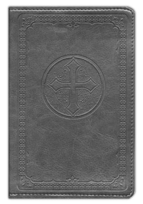 niv pocket bible.jpg