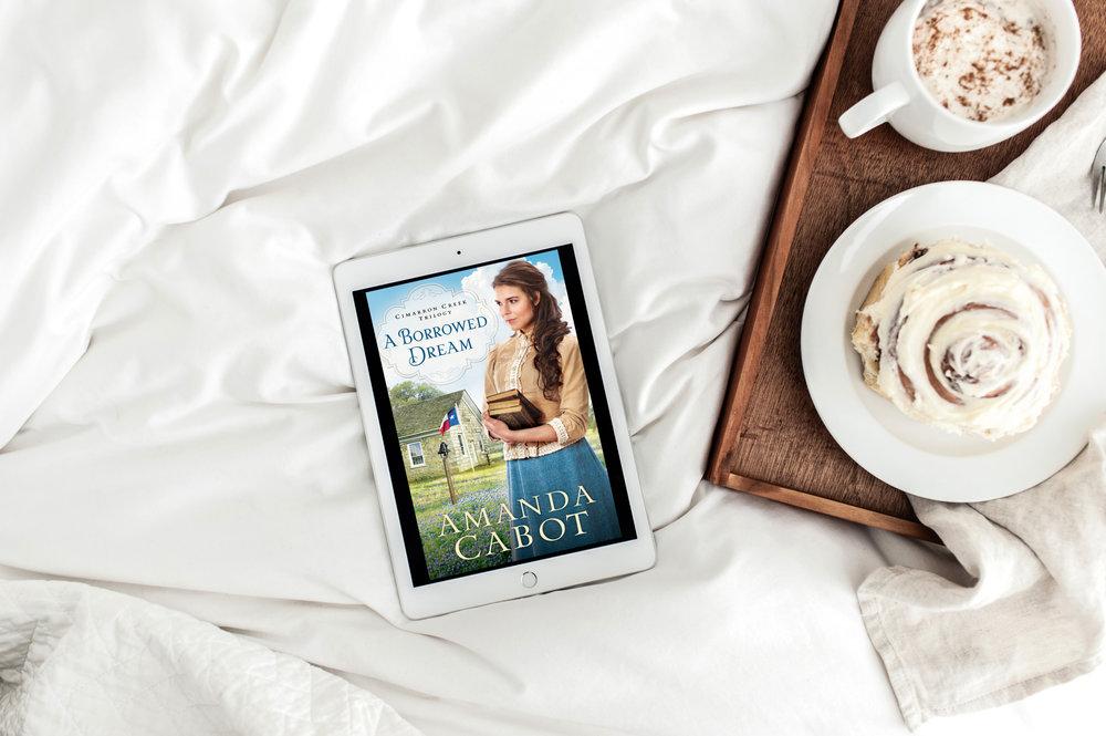 a borrowed dream amanda cabot book review