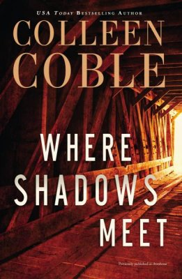 where shadows meet.jpg