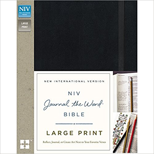 niv journal the word.jpg