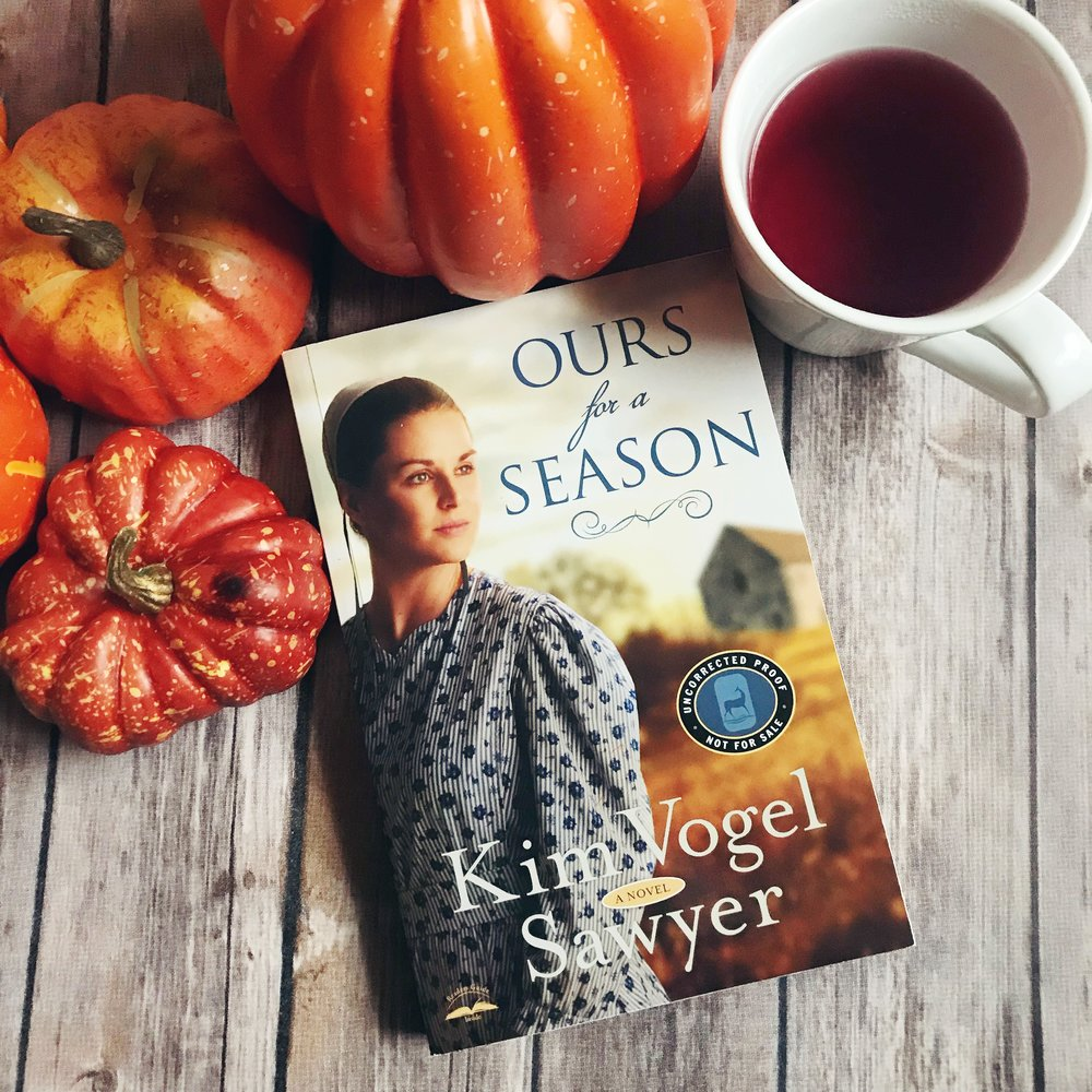 ours for a season kim vogel sawyer book review