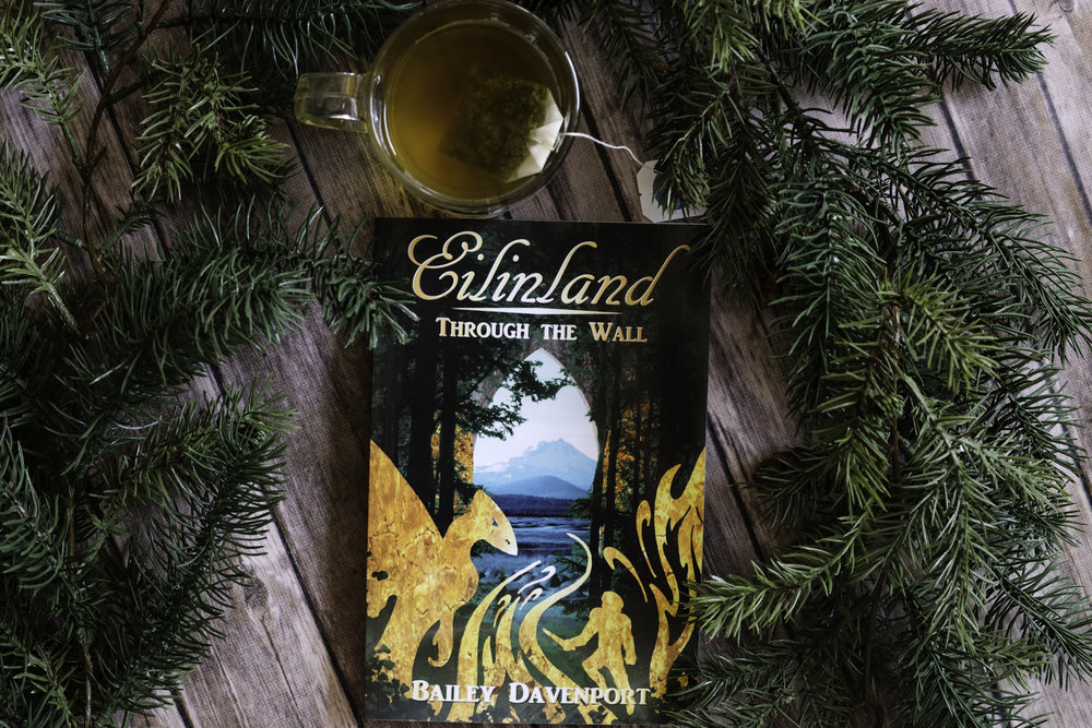 eilinland through the wall book review bailey davenport