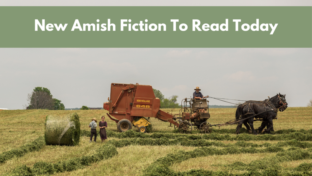 New Release Amish Fiction