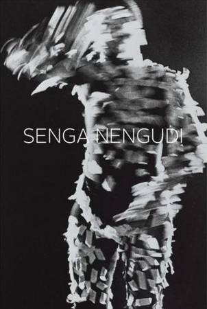 Senga Nengudi - Dominique Levy Gallery (2015)