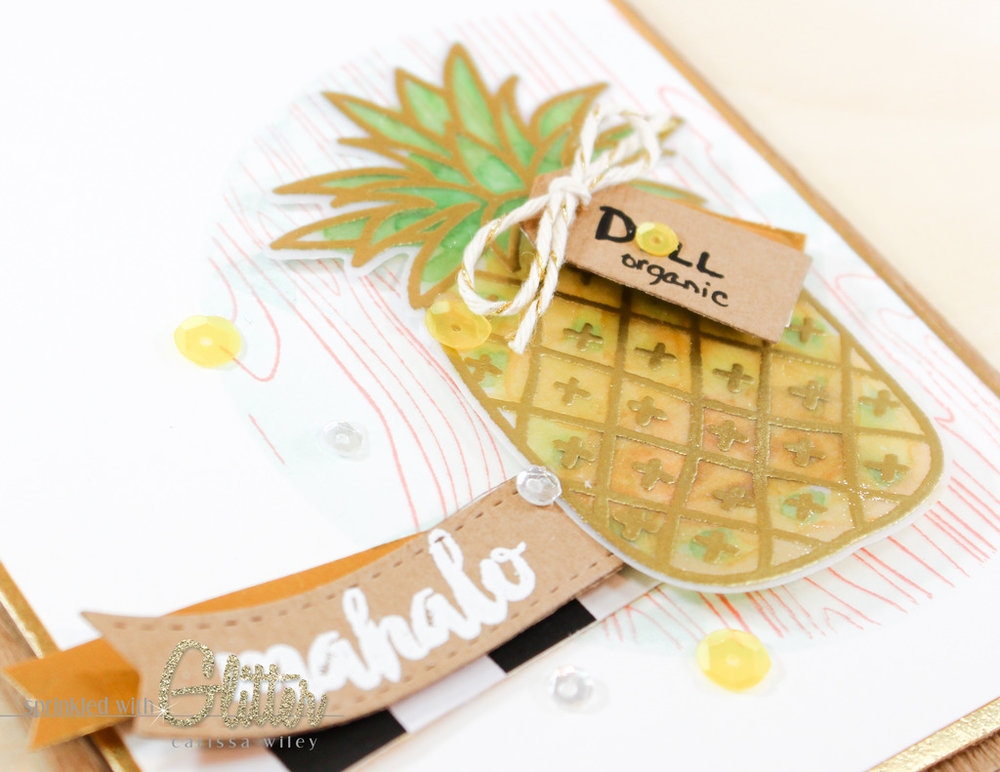 Mahalo Watermarks 13 of 13_zpszsz6spbb.jpg